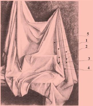 Рисунок драпировки (тональное решение): 1 — свет; 2 — полутон; 3 — собственная тень; 4 — рефлекс; 5 — падающая тень